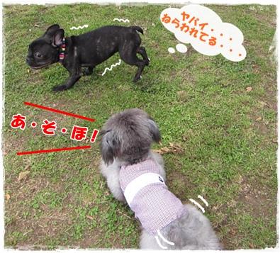 IMG_8185-1.jpg