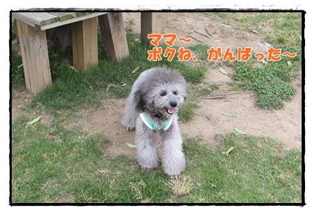 IMG_8338-1.jpg