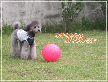 IMG_8624-1.jpg