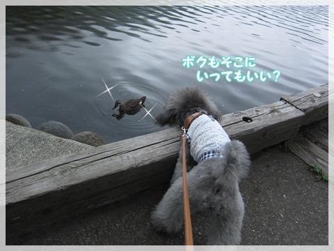 IMG_9773-1.jpg