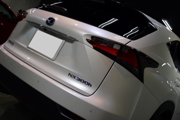 NXFスポ-08