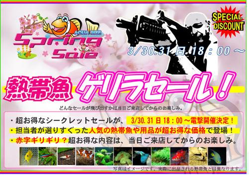 E382B2E383AAE383A92013spring-thumbnail2.jpg