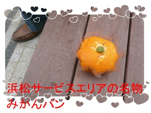 P1020633.jpg