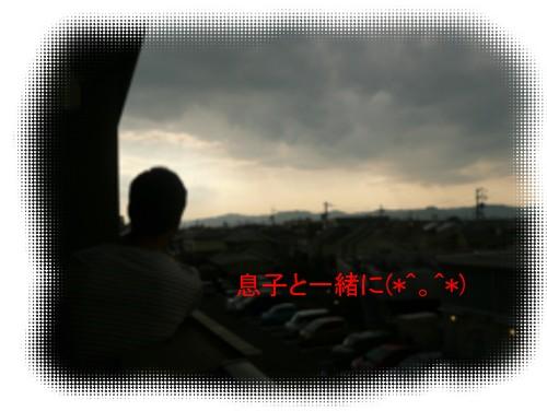 P1020725.jpg