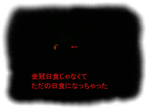 P1020731.jpg