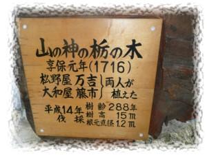 P1030427.jpg