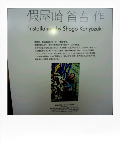 roidizer_1351318190200_null.jpg