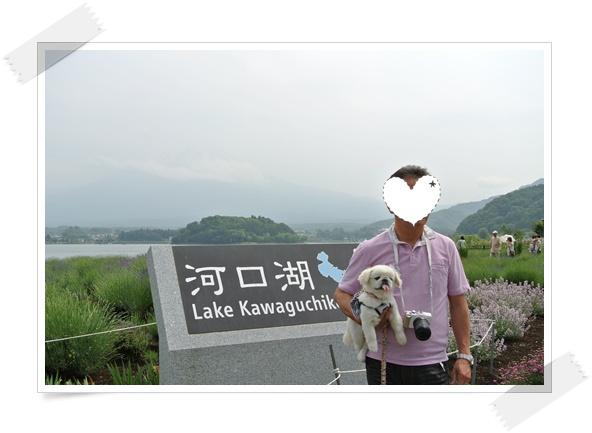 120615東京 5