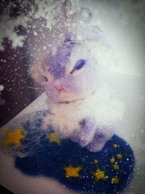 2012-12-29-01-43-01_deco.jpg