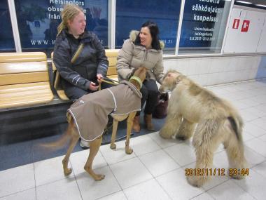 フィンランド+065_convert_20121213110235