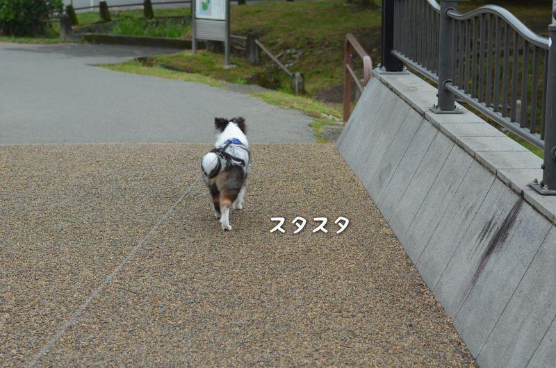 IMG_7160.jpg