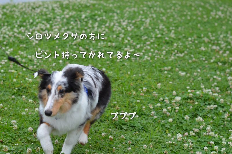 IMG_7164.jpg