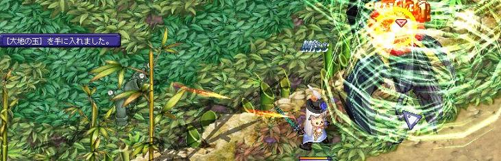 3.21竹の峡谷