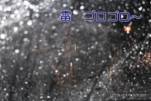 02-IMG_4932.jpg