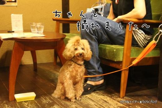 03-IMG_4894.jpg