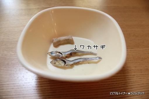 03-IMG_5935.jpg