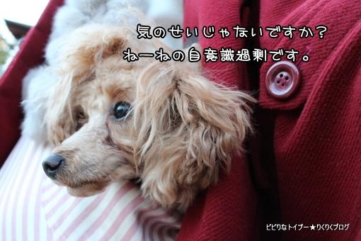 09-IMG_9723.jpg