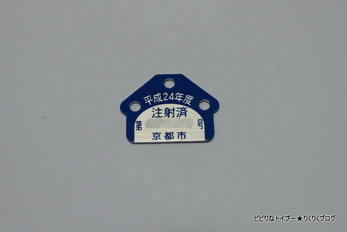 1-IMG_6654_20121006000521.jpg
