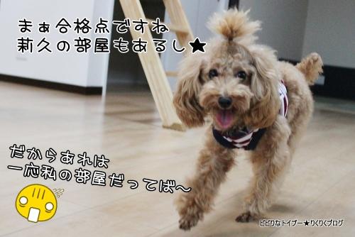 1-IMG_6745.jpg