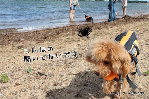 11-IMG_5573.jpg