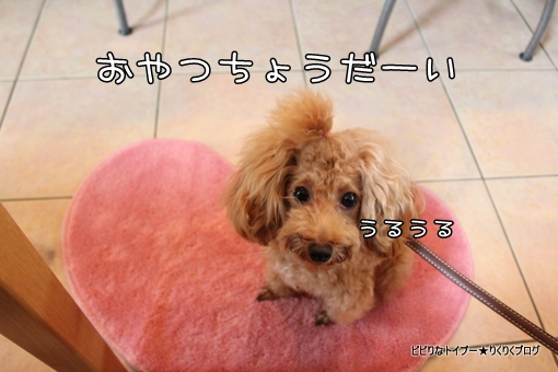 11-IMG_5967.jpg