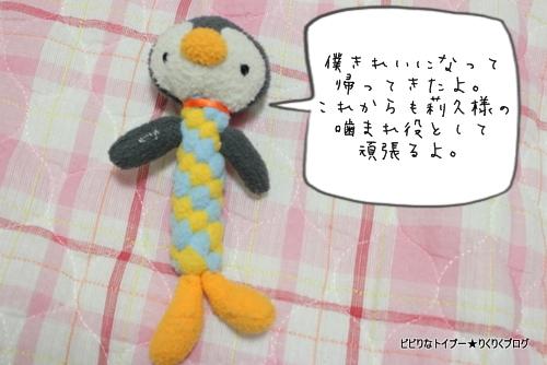 12-IMG_5026.jpg