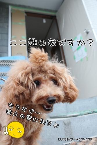 2-IMG_5697.jpg