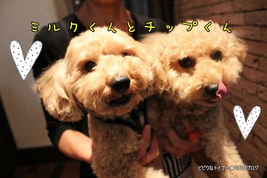 3-IMG_4351.jpg