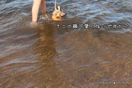 4-IMG_5615.jpg