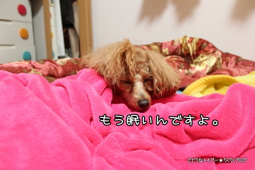 4-IMG_9628.jpg