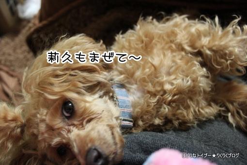 7-IMG_9108.jpg