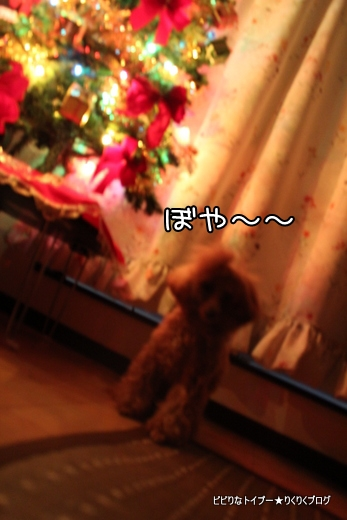 7-IMG_9456.jpg