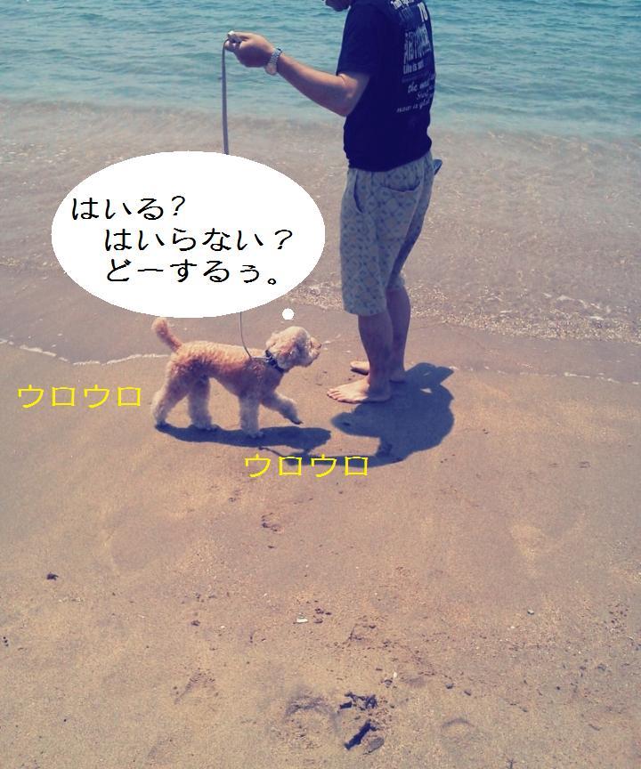 C360_2012-05-27-12-11-40.jpg