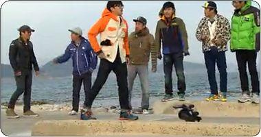 SnapCrab_NoName_2013-4-10_9-30-13_No-00.jpg