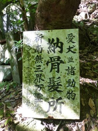 犬鳴山30