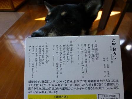 阪神タイガースカレー2
