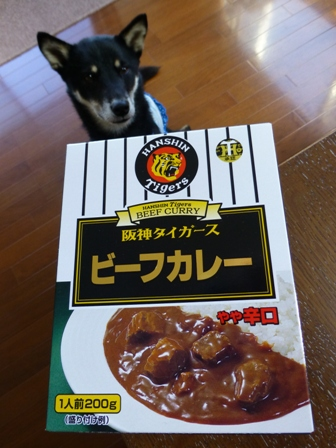 阪神タイガースカレー1