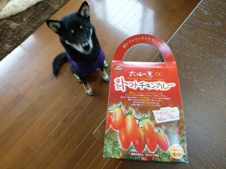 トマトチキンカレー7