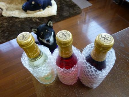 クリスタルハート酒2