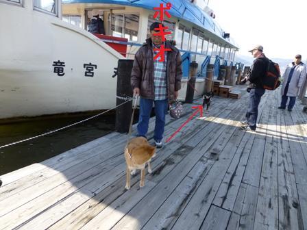 諏訪湖観光汽船31