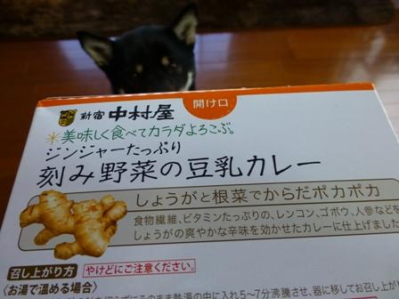 豆乳カレー2