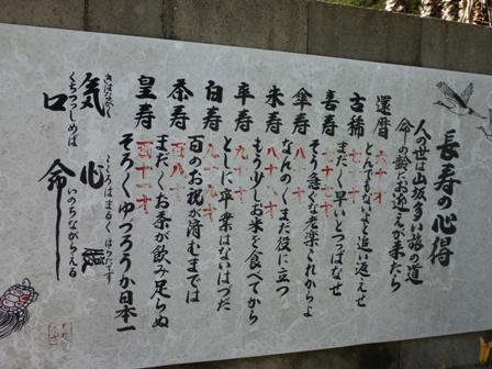 淡路立川水仙郷10