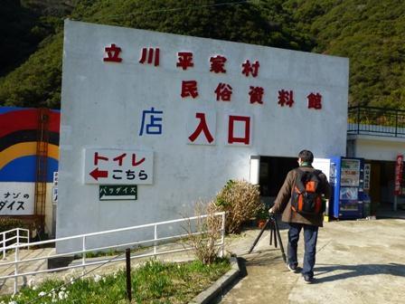 淡路立川水仙郷11