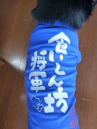 犬屋Tシャツ11