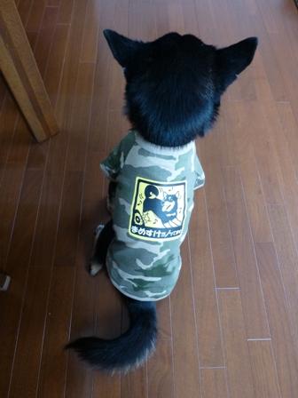 犬屋Tシャツ21