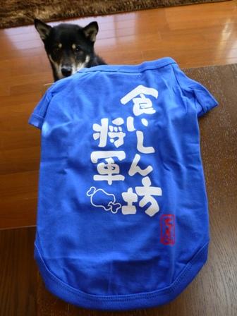 犬屋Tシャツ40