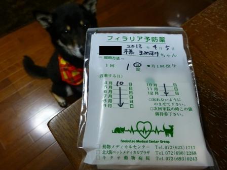 動物病院(04052013)10