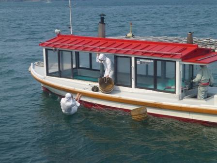 ミキモト真珠島11