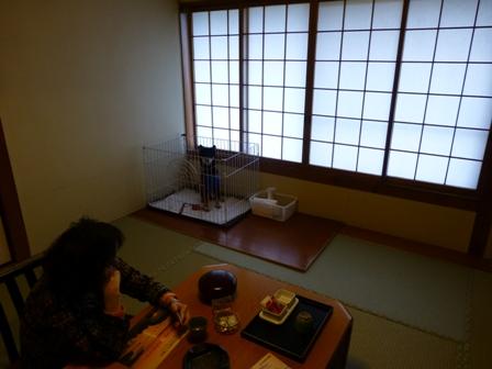 ホテル鳥羽小涌園3
