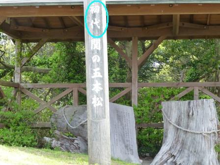 関の五本松公園14